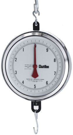 Chatillon® 4200 Series 9 inch Dial Hanging Scales in Lb