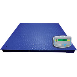 Adam Equipment® PT Floor Scale with GKaM Indicator