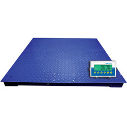 Adam Equipment® Adam Equipment PT Series Floor Scales with AE403 Indicator