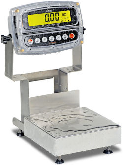 Detecto® Admiral Series Stainless Steel Bench Scales