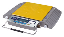 CAS® RW-S/L Series Wheel Weighing Scale