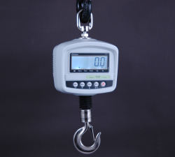 Citizen® HA D Series Crane Scales