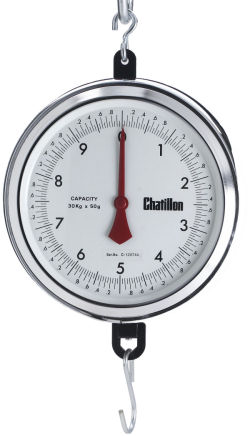Chatillon®4200 Series 9 inch Dial Hanging Scales in Kg