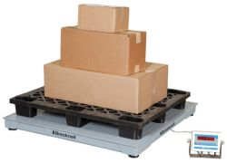 Brecknell® DSB Series Floor Scale
