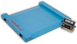 Detecto®Run-a-Weigh Series Portable Floor Scales