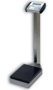 detecto stainless steel digital health care scales - Detecto Scales