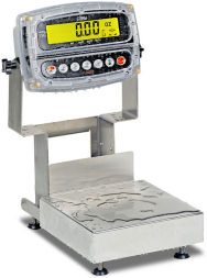 DetectoAdmiral Series Stainless Steel Bench Scales