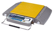 CAS RW-S/L Series Wheel Weighing Scale