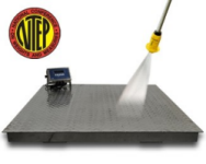 DigiWeigh DWP-FS Stainless Steel Floor Scales